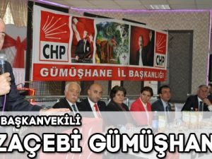 CHP GRUP BAŞKANVEKİLİ HAMZAÇEBİ GÜMÜŞHANE'DE