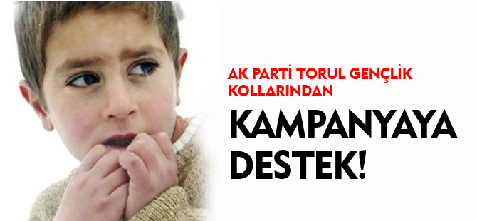 AK PARTİ TORUL GENÇLİK KOLLARI'NDAN KAMPANYAYA DESTEK