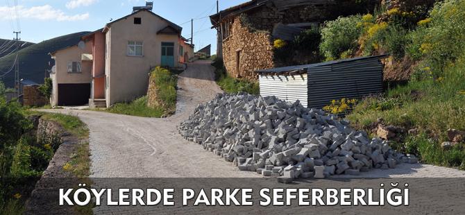 KÖYLERDE PARKE SEFERBERLİĞİ