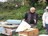 Arıcılar kış hazırlıklarını tamamladı