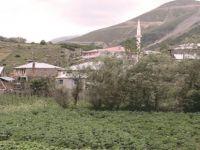 Kopuz Köyü Karantinaya Alındı