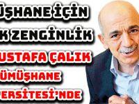 DR. ÇALIK, GÜMÜŞHANE ÜNİVERSİTESİ'NDE